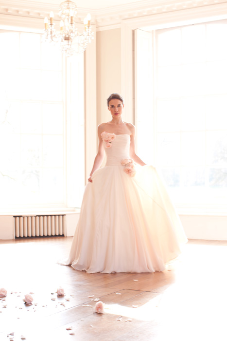 Blush Wedding Dresses Ideas